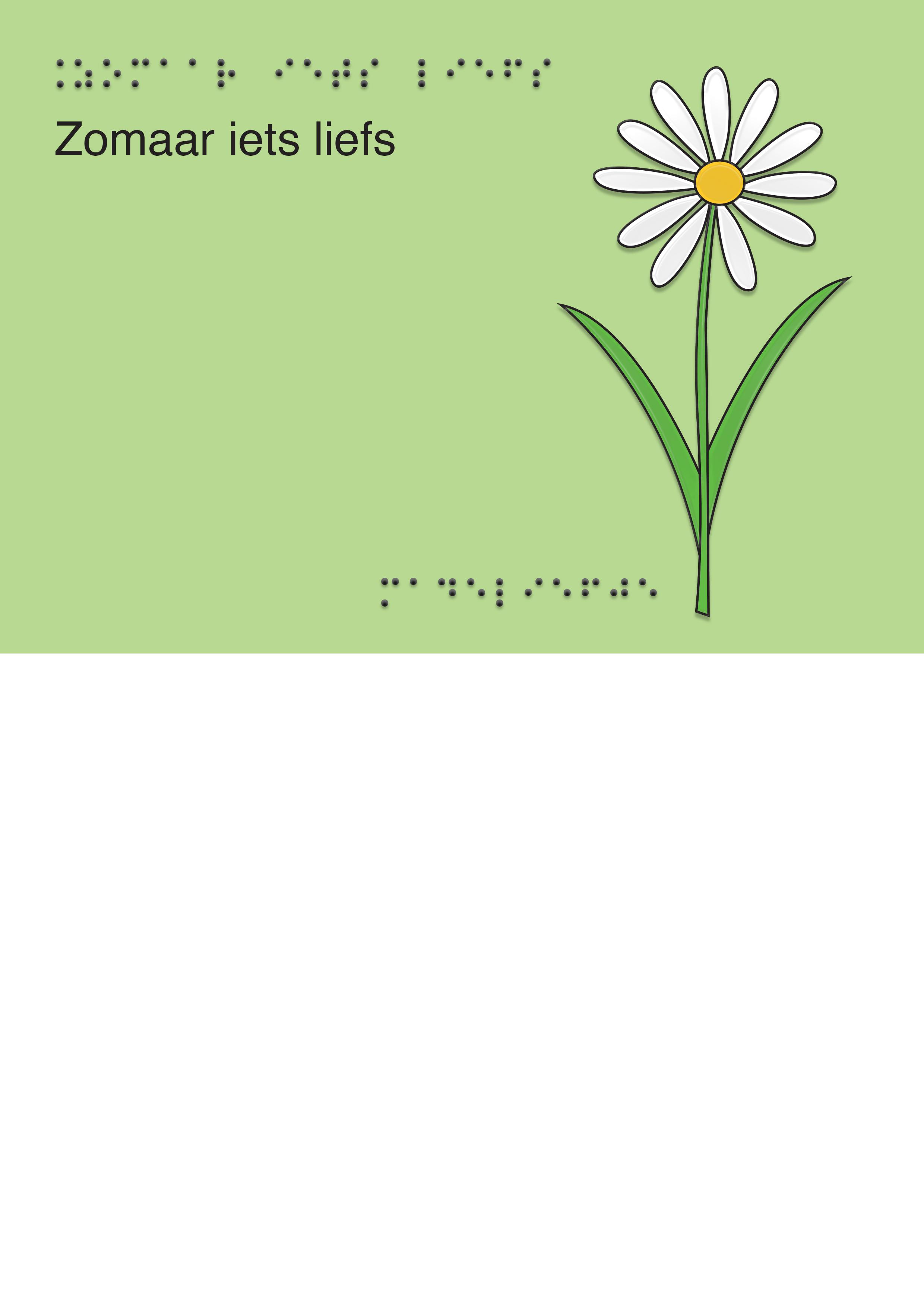 Voelbare wenskaart met braille en reliëf. In braille de tekst: Zomaar iets liefs. Met full color voelbare afbeelding van een bloem.